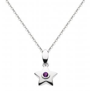 Stella Birthstone Amethyst Necklace